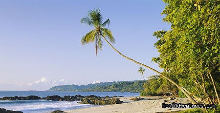 Secluded beach in Costa Rica (#4 of 15) - History Of Scuba Diving & Adventure In Costa Rica