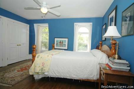 Comfy Guest House and Suite Downtown Toronto Toronto, Ontario Bed & Breakfasts