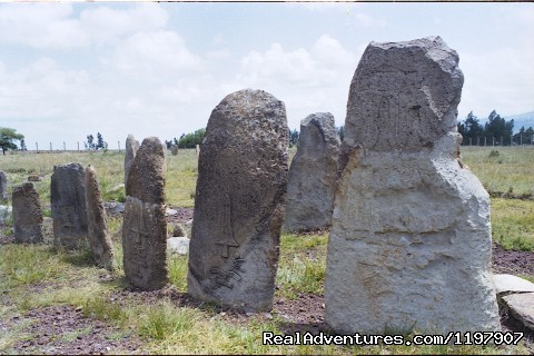 Tiya Standing Stone Steale - Ethiopian Tour and Sight-Seeing