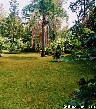 Outside garden - Margpher Guest House - Home away from home