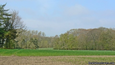 Ursel Landscape - Romantic Lodge in Drongengoed Naturpark / Bruges