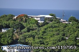 Hillcrest  Guest House, St. John,  US Virgin Islands - Hillcrest Guest House, St. John, US Virgin Islands