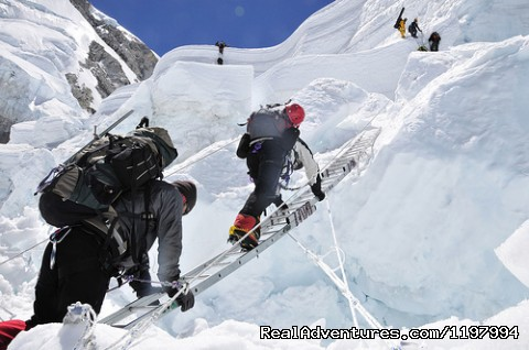 Nepal Tours and Trekking (P) Ltd.