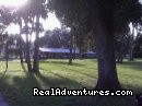 - Beautiful Trail Rides Minutes from Downtown Ocala