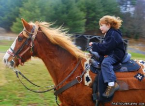 Come Horse around  at Foxwoode Farms!  Todd, North Carolina Horseback Riding