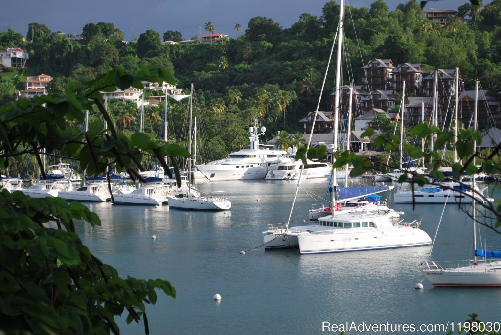 Marigot - the most famous harbour in the Caribbean | Image #14/26 | Mango Beach Inn, Adventure Lodge