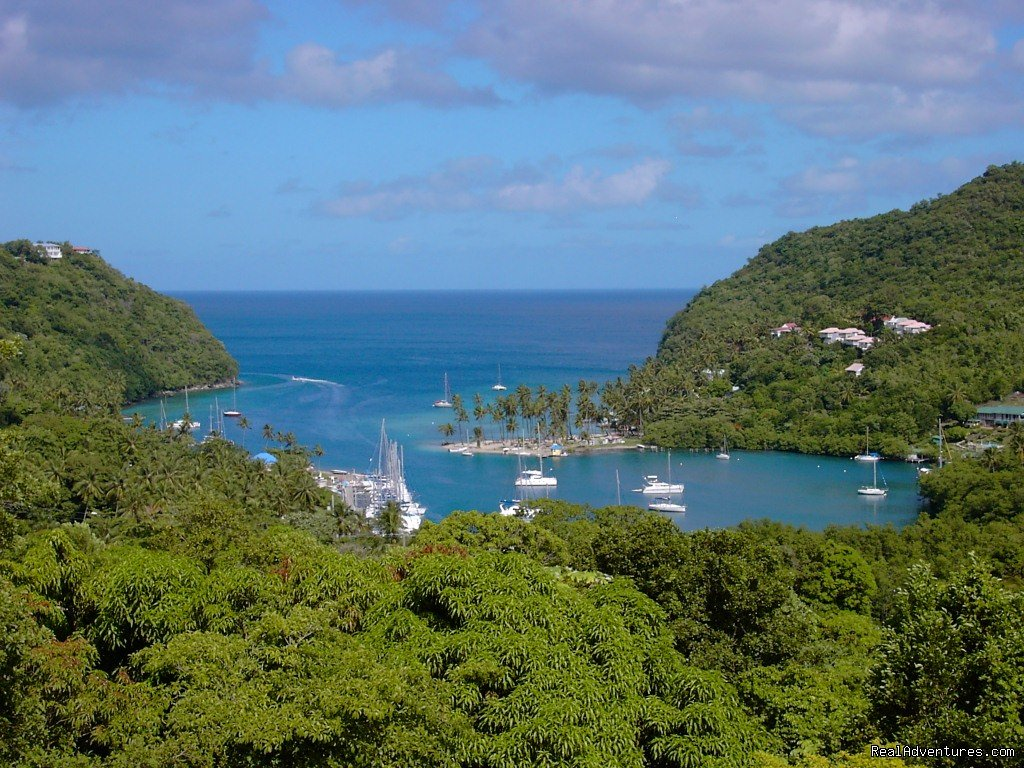 Marigot Bay. a naturally deep harbour | Image #16/26 | Mango Beach Inn, Adventure Lodge