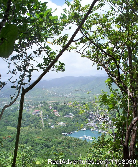 Top of the Martinique trail - Mango Beach Inn, Adventure Lodge