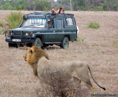 Safari adventure Tanzania - Adventure tours nature wildlife safaris Tanzania