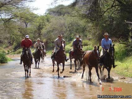 Horse riding in Tanzania (#7 of 12) - Tanzania tours, African safaris destination