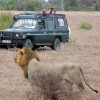 Adventure tours nature wildlife safaris Tanzania