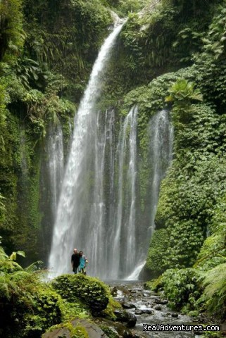 - Lombok Tour & Travel Agent Information