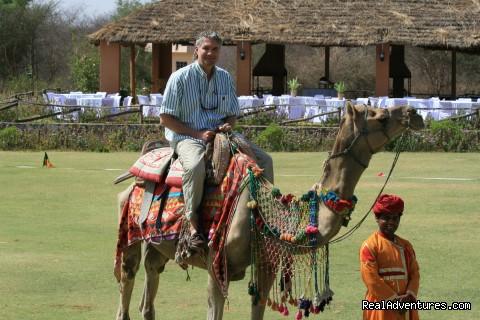 Camel Ride - Mintcentive