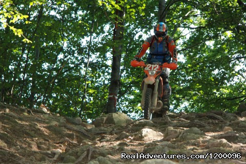 - Enduro in Romania, Tarcu Mountains Tours