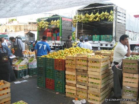 Local mercado (#3 of 21) - Culinary Adventure on the Sea of Cortez
