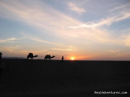 Image #2/5 |  camel trekking and tours to the desert of Morocco