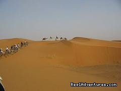 Image #5/5 |  camel trekking and tours to the desert of Morocco