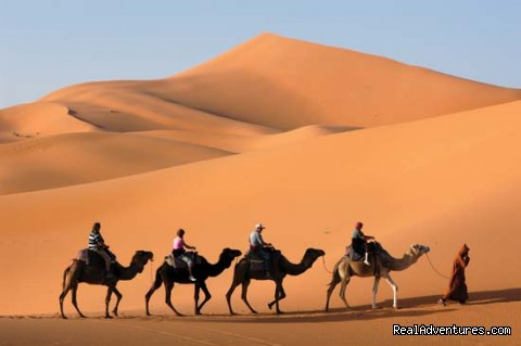 camel trekking and tours to the desert of Morocco