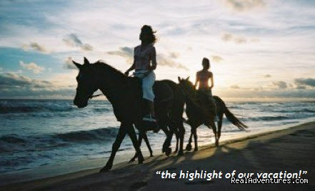 Image #1 of 1 - Florida Horseback Riding On the Beach