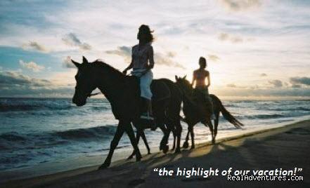 Florida Horseback Riding On The Beach