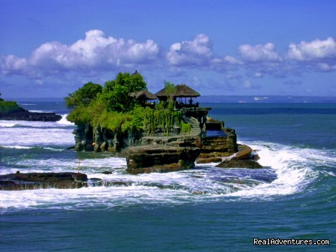 - Bali private driver customized tour