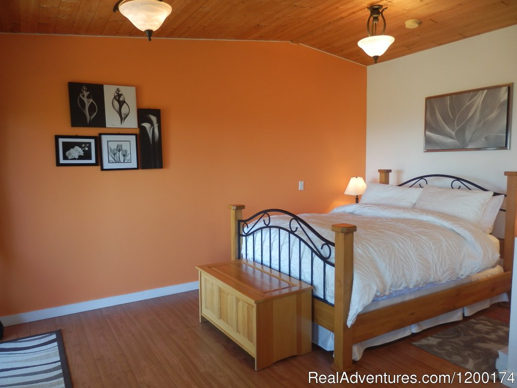 "Armand Heights B&B offers three beautifully romantic rooms, each with their own private entrance and balcony overlooking a magnificent view of the Southern Gulf Islands, the mainland and mountains in the distance. This is truly ""top of the world�"