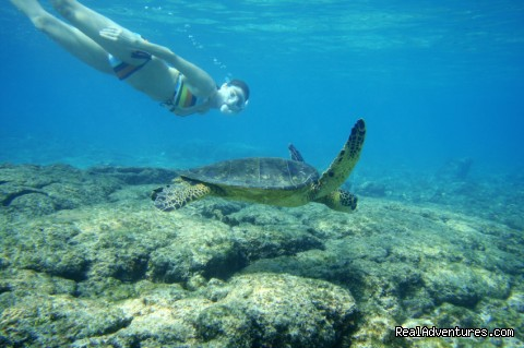 Snorkel with the local sea turtles - All Inclusive Womens Retreats - Hanalei Bay, Kauai