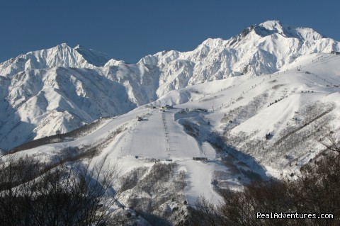 Hakuba Powder Tours - Japanese Skiing at its Best View of Happo One from Iwatake