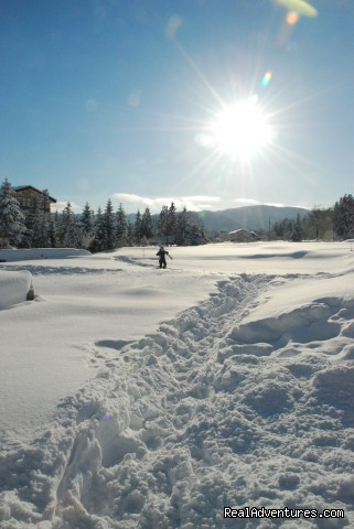 Powder trail, Hakuba - Hakuba Powder Tours - Japanese Skiing at its Best