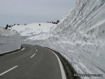 Hakuba Powder Tours Japanese Skiing At Its Best Nagano