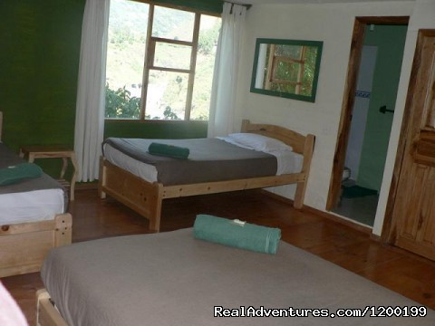 triple bedroom - Eco Haven In Tranquil, Tourist Town