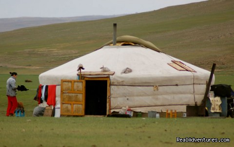 Best Highlights of Mongolia: Mongolian traditional ger