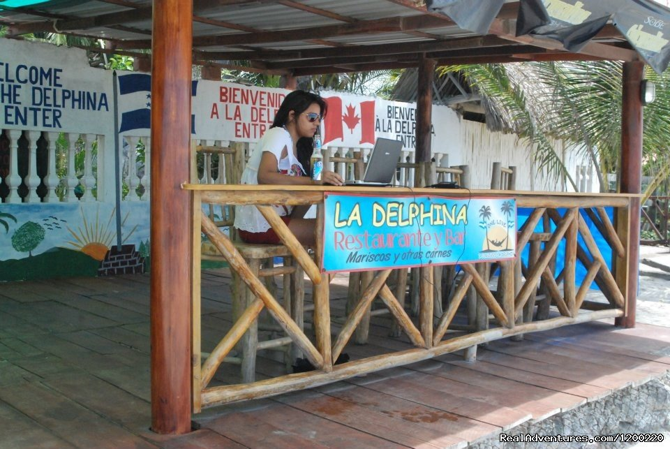 Image #11/17 | La Delphina Bed and Breakfast Bar and Grill