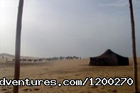 Nomad tent bivouac in Moroccan desert - Eco tours, hiking & adventures tours Morocco
