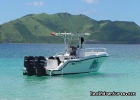 - Dive and Snorkel in beautiful Saint Martin