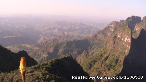 - Tour and Travel to Ethiopia