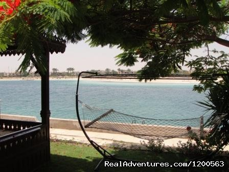 Rent Villa, Marina Egypt North Coast - Marina Egypt. Rent Villa At North Coast