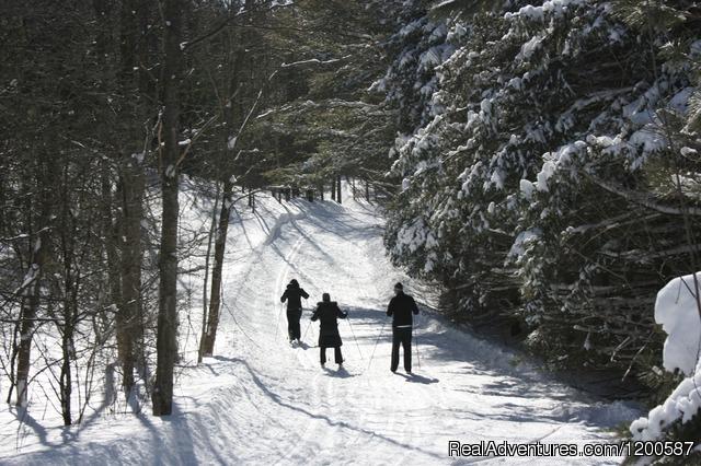 Dagmar Resort Uxbridge Ontario Skiing Amp Snowboarding