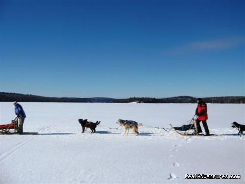 Mushing 2010 - Couples Resort