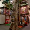 Giant Indoor Playzone