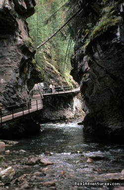 Image #4 of 6 - Johnston Canyon Resort