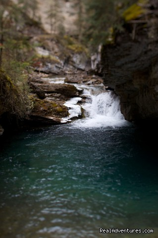 Image #6 of 6 - Johnston Canyon Resort