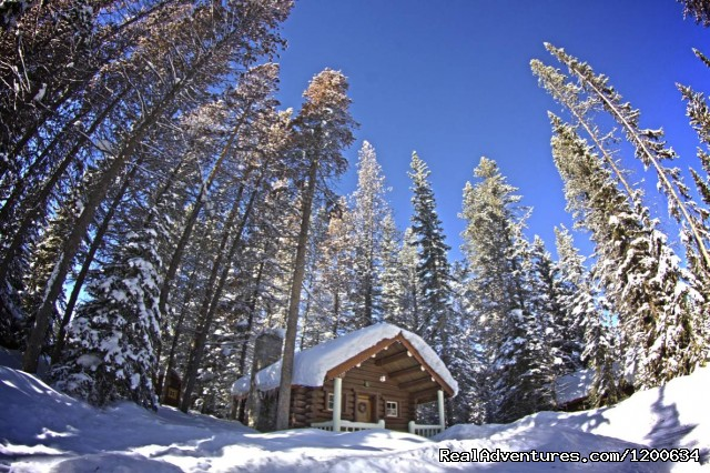 Historic Log Cabin - Storm Mountain Lodge and Cabins