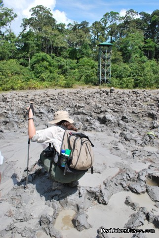 Lipad mud volcano - Tabin Wildlife Reserve Safari