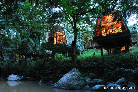Tabin Wildlife Resort - Tabin Wildlife Reserve Safari