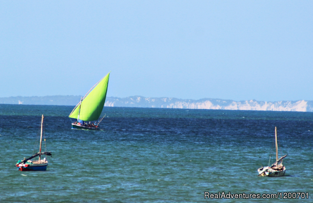 'Lisa' with her eye-catching lime green sail - Family holiday at Casa Chibububo Lodge, Vilanculos