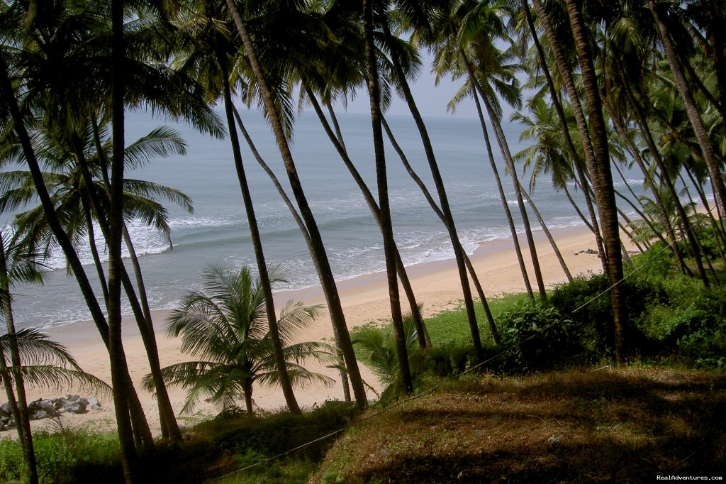 Image #5/8 | Beach Front Home Stay In Kannur