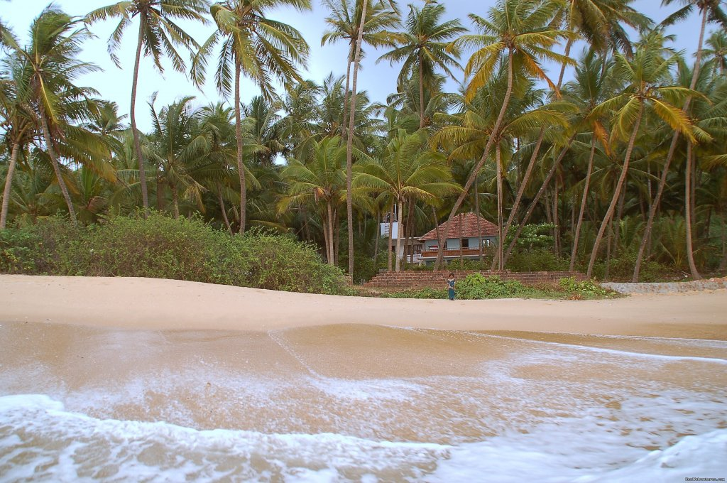 Image #8/8 | Beach Front Home Stay In Kannur
