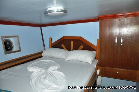 Room no,1 of  our liveabord Dolphin-1 - Maldives Trips - Fishing, Surfing, & Scuba Diving