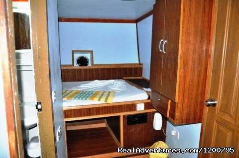 Room-no,5 in our live aboard Dolphin-1 (#19 of 24) - Maldives Trips - Fishing, Surfing, & Scuba Diving